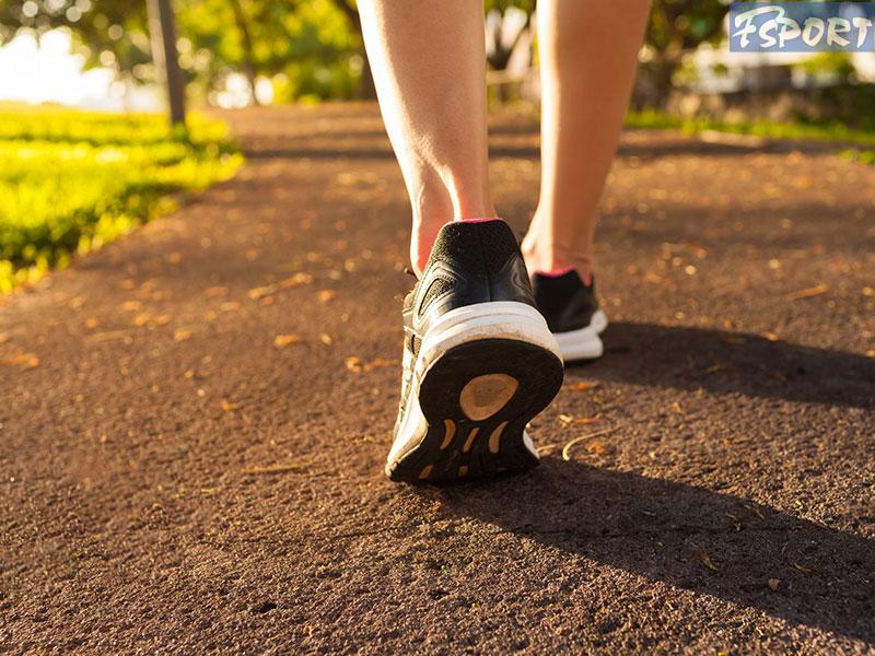 tên các loại giày thể thao